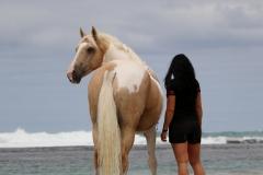 Alycia & Goldrush at the beach Australia 2