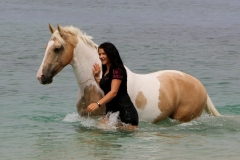 Alycia & Goldrush at the beach Australia 4