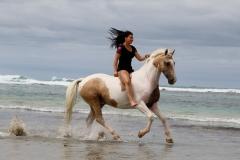 Alycia & Goldrush at the beach Australia 7