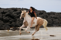 Cantering on the beach Australia 2