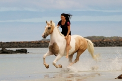 Cantering on the beach Australia 4