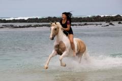 Galloping at the beach 1