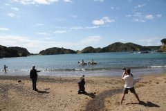 Filming Matai Bay Northland (1)