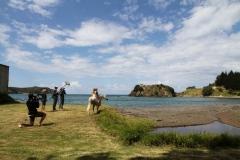 Filming Matai Bay Northland (15)