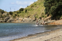 Filming Matai Bay Northland (30)