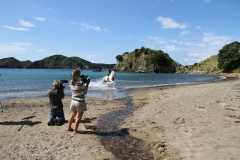 Filming Matai Bay Northland (36)
