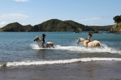 Filming Matai Bay Northland (40)