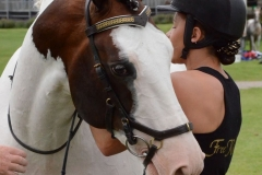 Other Horses (13)