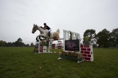Jumping Made Easy (15)