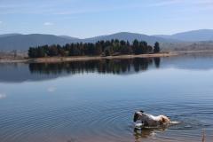 Jindabyne Lake 2