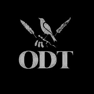 ODT-300x3001