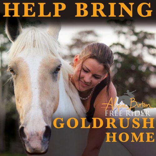 Help bring Goldrush Home